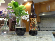 Cool Beanz Coffee Porter Review
