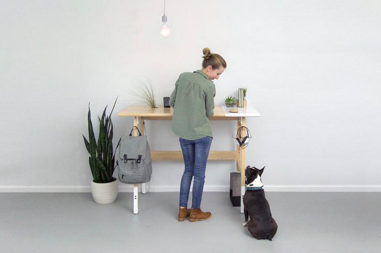 artfox-desk-01-standing-desk-3