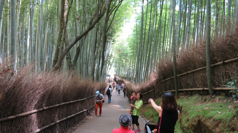 Tourist Trap: Bamboo Grove in Kyoto